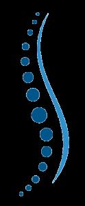 Wirbelsäule - Dorn-Hohentengen